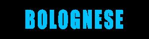 Bolo-Club-login