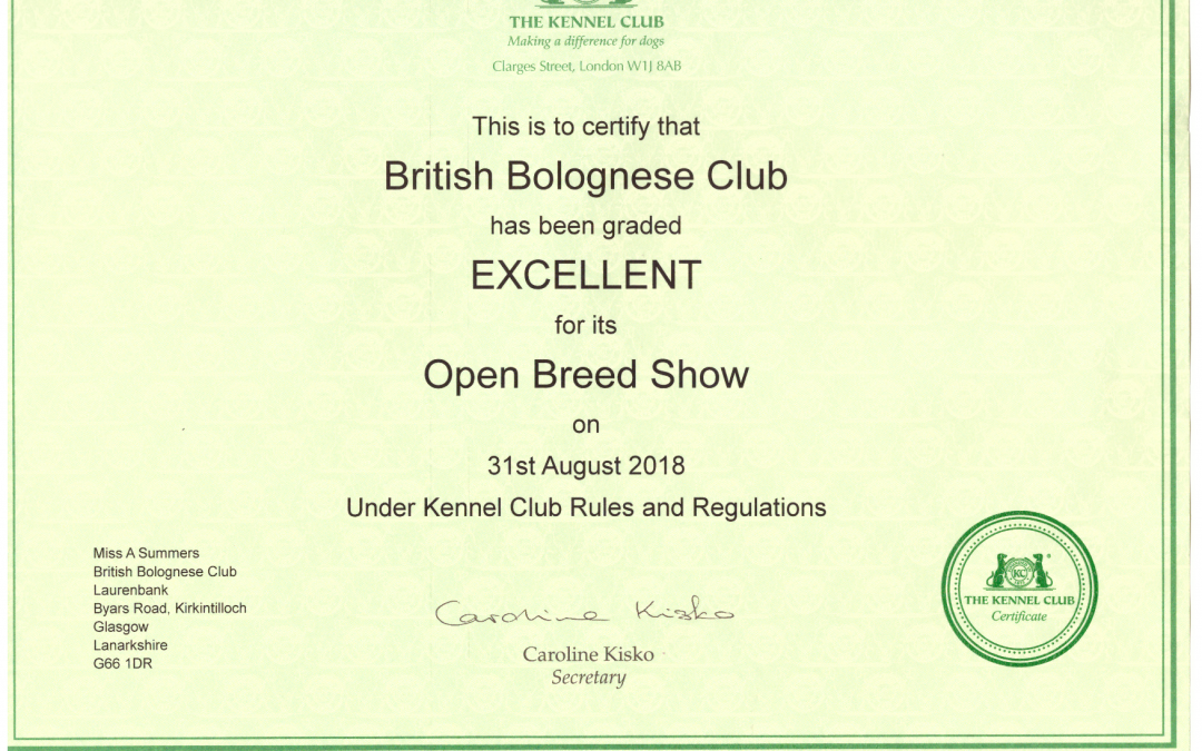 British Bolognese Club is awarded Certificate of Excellence