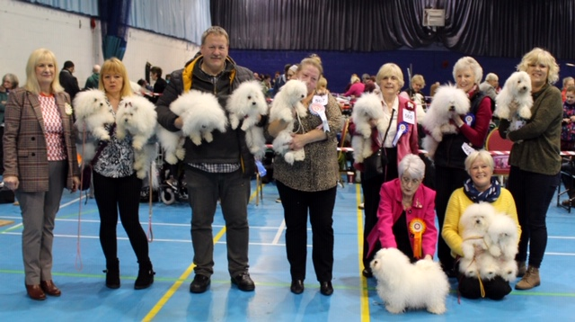 Sutton Coldfield & District Canine Association Open Show Saturday 23rd February 2019 – Judge's Critique
